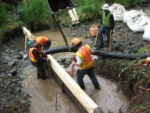 Marx Creek 043